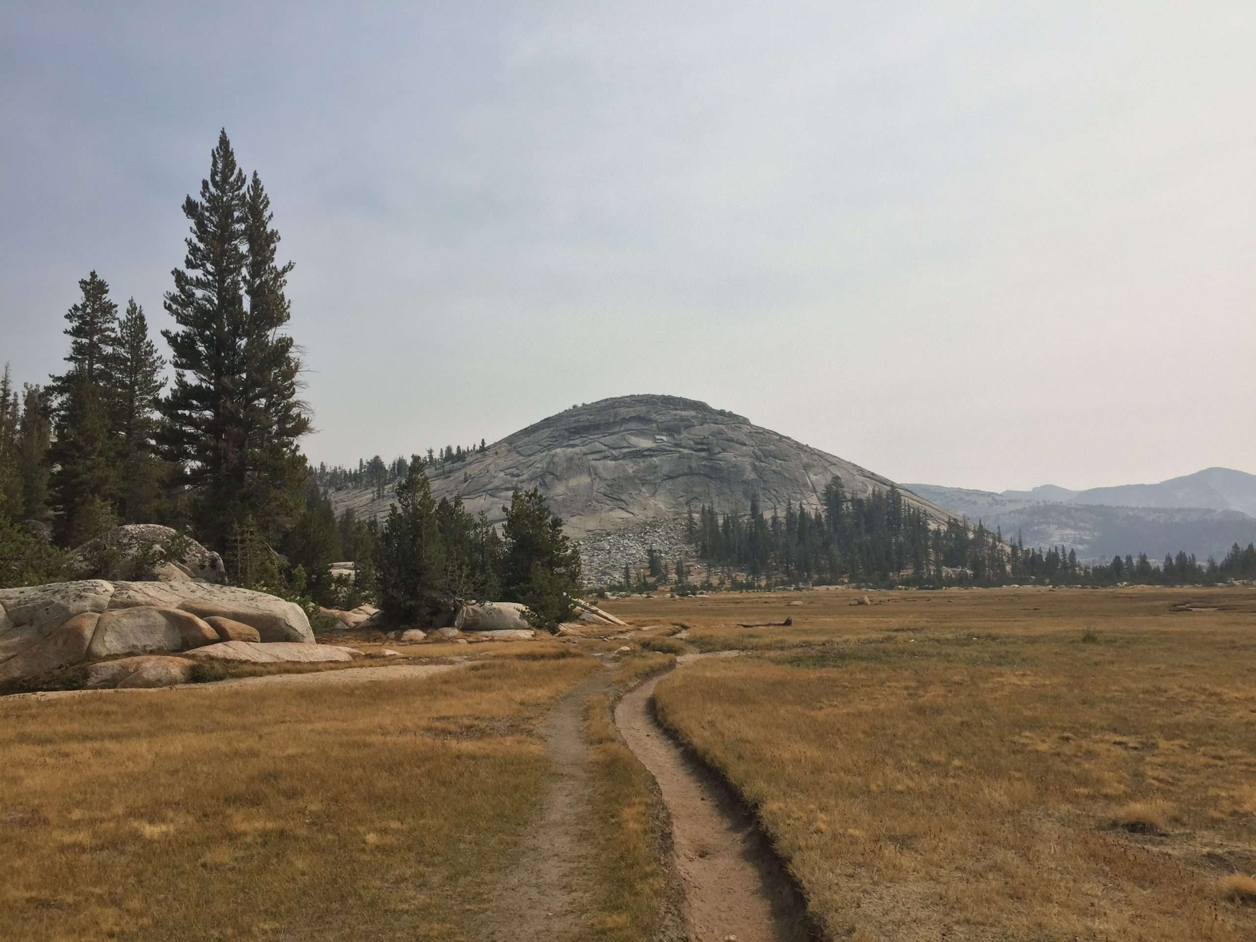 Golden Meadows, Expedition to the High Country